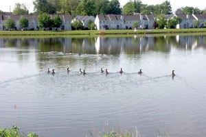 Photo 5 - Senior Horizons at Silver Lake, 141 Bert Crawford Road, Middletown, NY 10940
