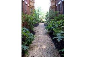 Photo 17 - Vernon House Apartments, 3226 Clifford Street, Philadelphia, PA 19121