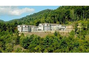55 Piney Mountain Drive - Asheville, NC 28805