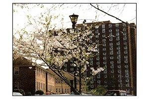 Photo 3 - St. Paul Apartments & Village, 1330 Forsyth Street, Macon, GA 31201