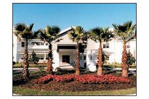 414 Chapman Road East - Lutz, FL 33549